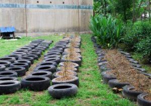 tire-gardening