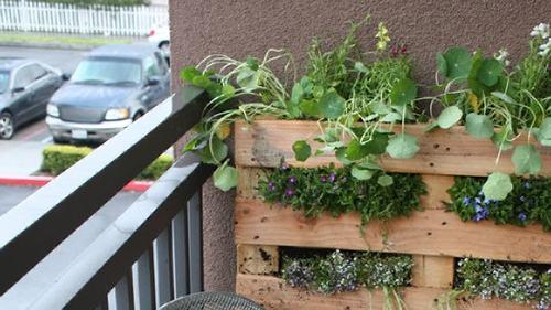 Small Flowers Apartment Balcony Garden Ideas