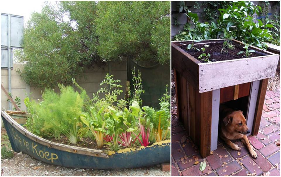 Make your vegetable garden healthier with these 15 unusual for Unique vegetable garden ideas