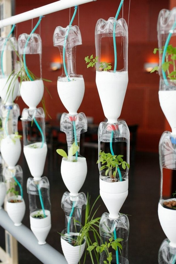 16 Genius Diy Recycled Plastic Bottle Gardens You Need To See