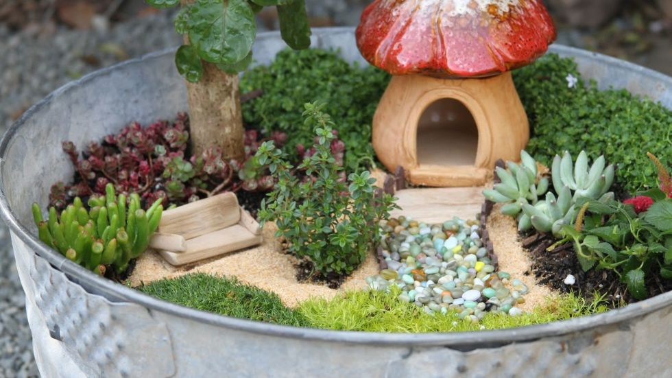 12 enchanting diy fairy garden ideas for your backyard for Fairy garden box ideas