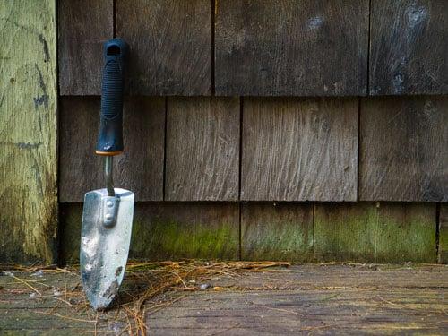 dangers-gardening