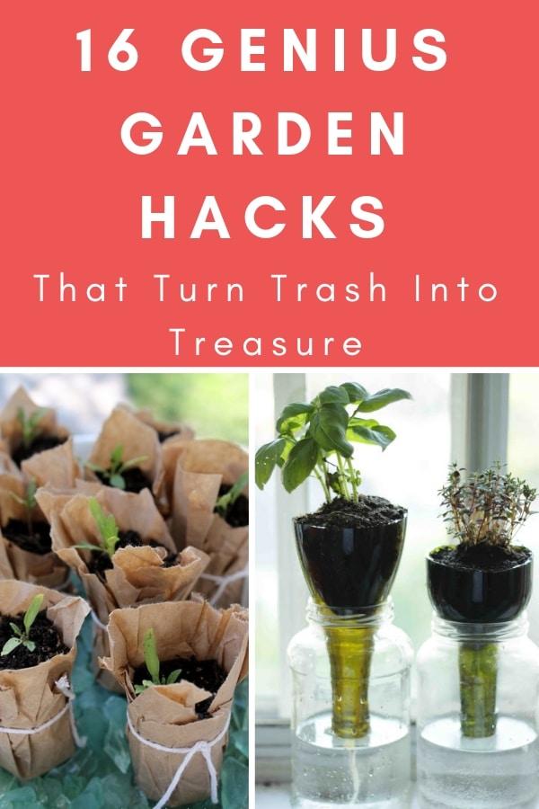 16 Genius Garden Hacks That Turn Trash Into Treasure