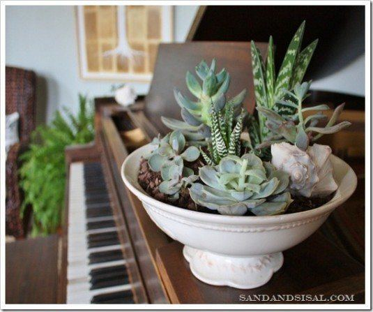 Cheap Gardening Ideas: 24 Cheap Planter Ideas For Amazing Succulent Garden