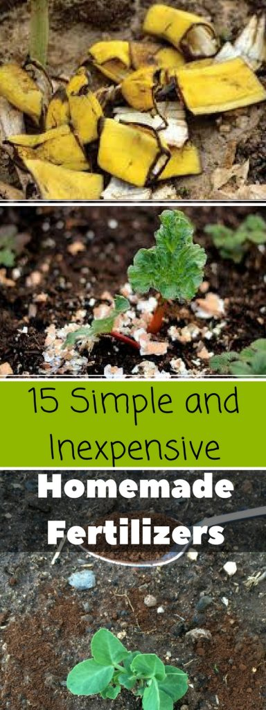 15 Simple and Inexpensive Homemade Fertilizers