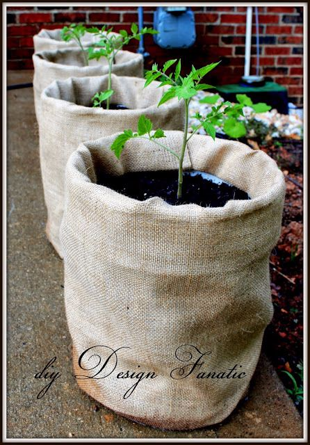 10 Phenomenal Uses Of Burlap In The Garden