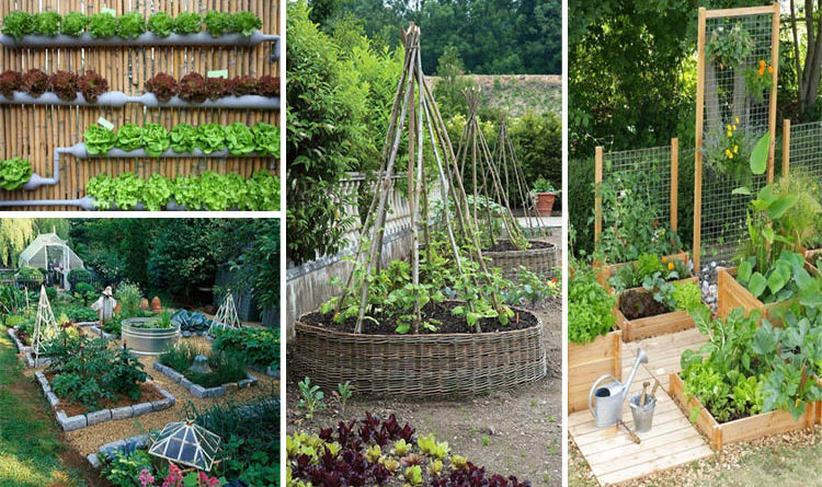 10 Excellent DIY Garden Ideas People Use to Grow Fruits ...