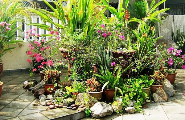 10 Most Essential Container Garden Design Tips And Ideas