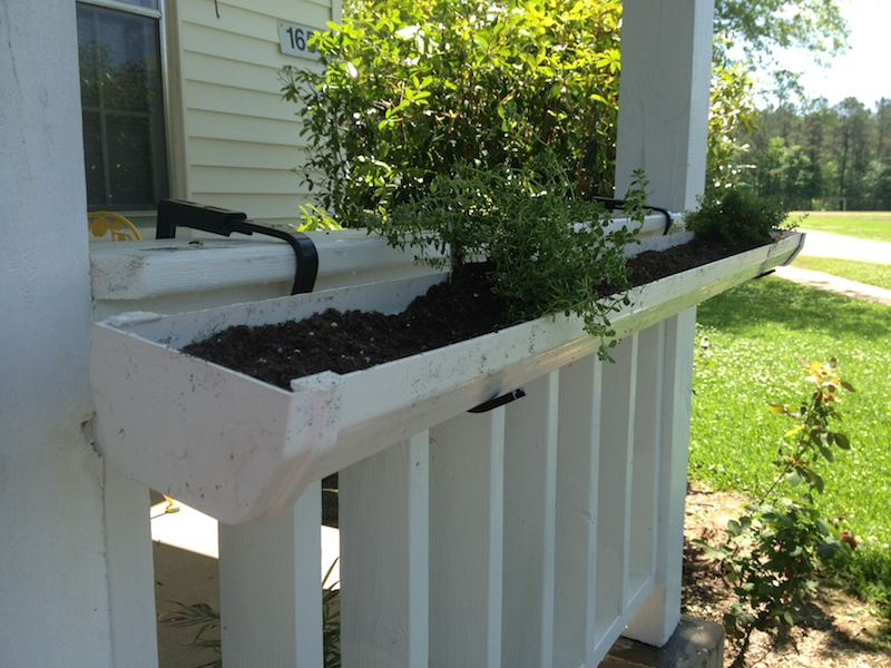 10 Rain Gutter Garden Ideas To Spruce Up Your Garden