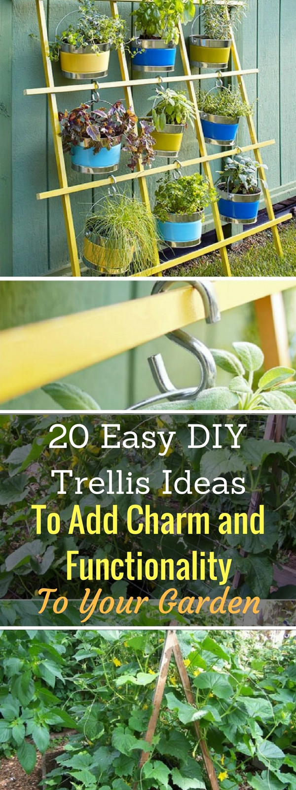 20 Easy DIY Trellis Ideas To Add Charm and Functionality To Your ...