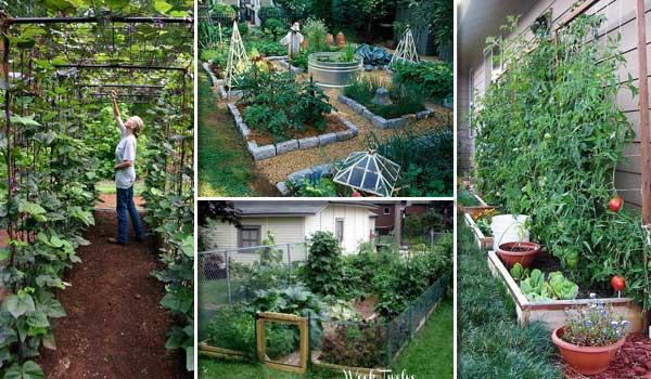22-ways-vegetable-garden