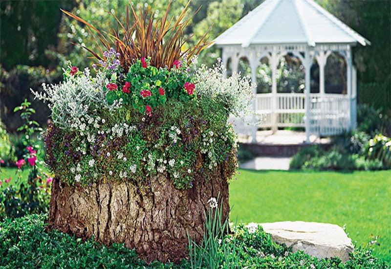 Flower Bed Around Tree