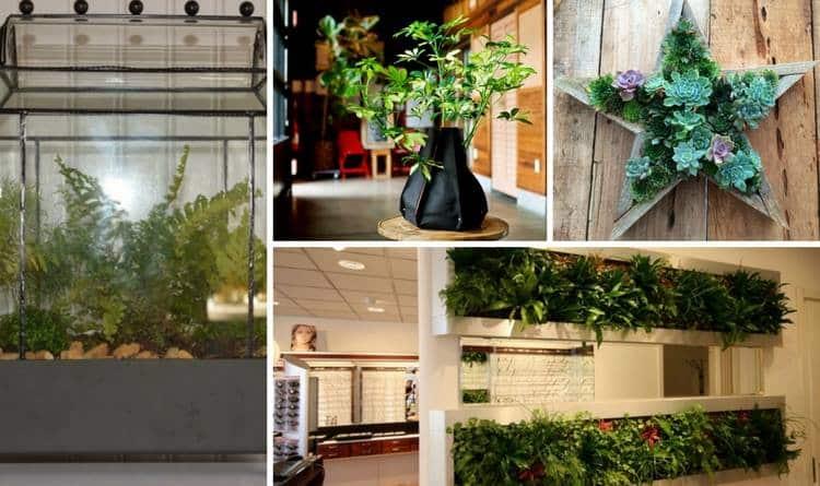 11 Innovative Amp Fun Indoor Planter Ideas