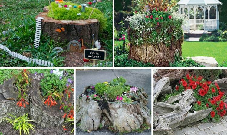 Tree Stump Ideas Part - 34: 15-amazing-tree-stump-ideas
