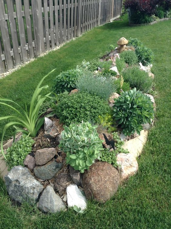 Among The Most Popular Plants Planted In These Rock Gardens Include: Ice  Plants, Irish Moss, Euphorbia, Sedum, Violet Star, Lamium, Blue Fescue.