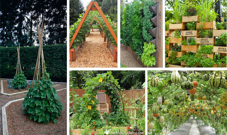 10-garden-beds-vegetables