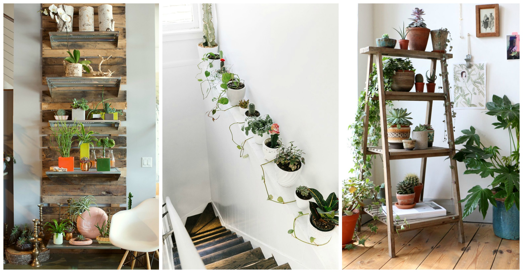 10 unexpected ways to decorate your home with plants - Cool ways to decorate your room ...