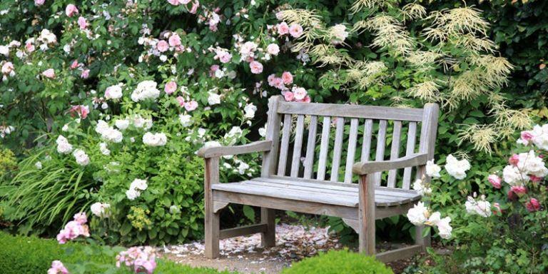13-gardening-mistakes
