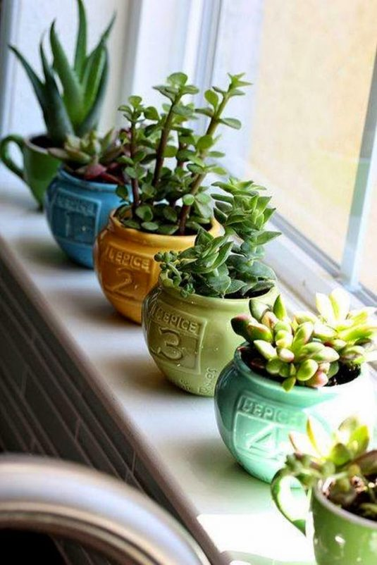 Attractive Windowsills Receive Full Light And Are Perfect Spot For Sun Loving Plants.  If You Want To Know Which Plants Will Thrive On Your Sunny Sills, ...