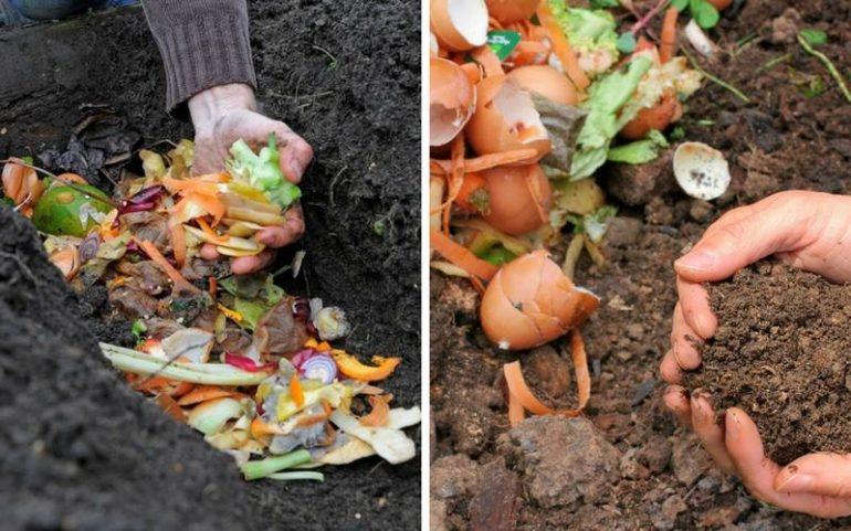 3-compost-techniques