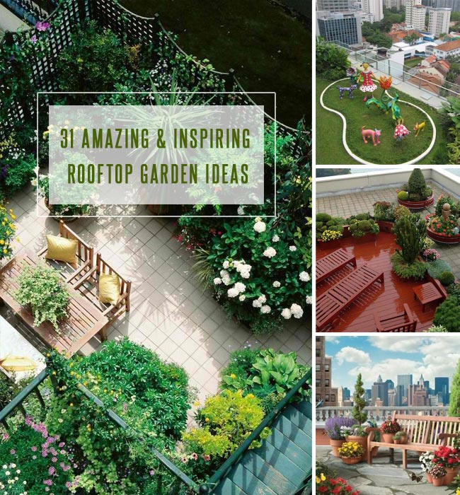 Ten Inspiring Garden Design Ideas: 31 Amazing And Inspiring Rooftop Garden Ideas