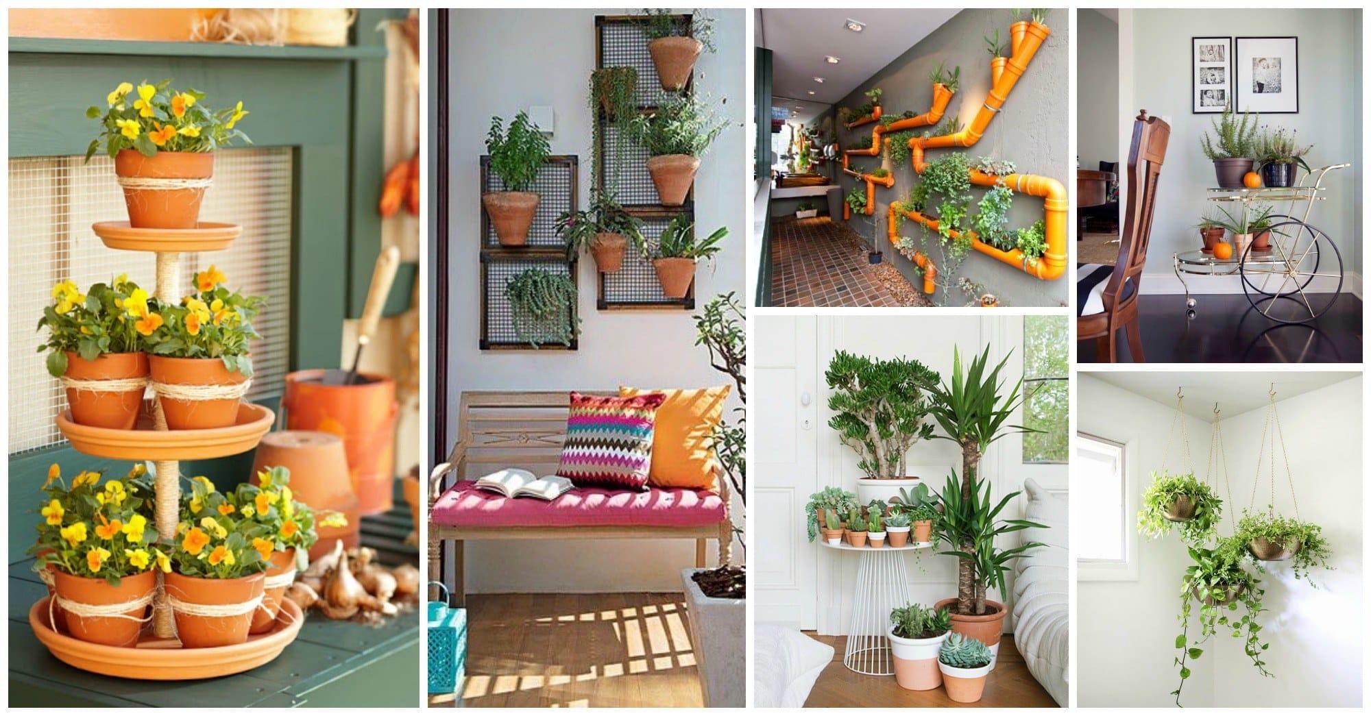 mesmerizing-indoor-gardens