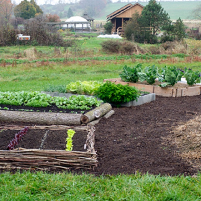 20 Raised Bed Garden Designs And Beautiful Backyard: 15 Beautiful DIY Raised Garden Bed Projects