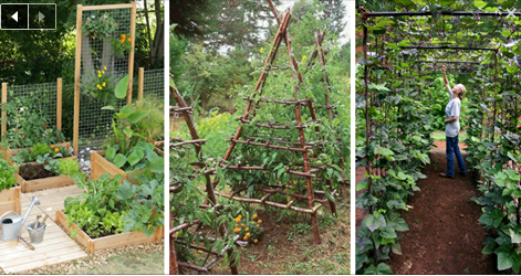 The 10 best ways to style your very own vegetable garden for Stylish vegetable garden