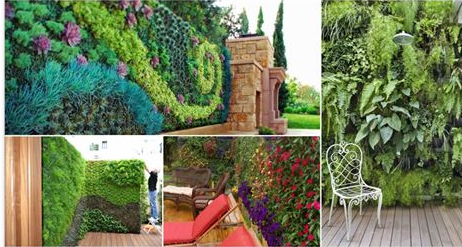 Vertical Wall Garden Is The Best Idea For Saving Some Space