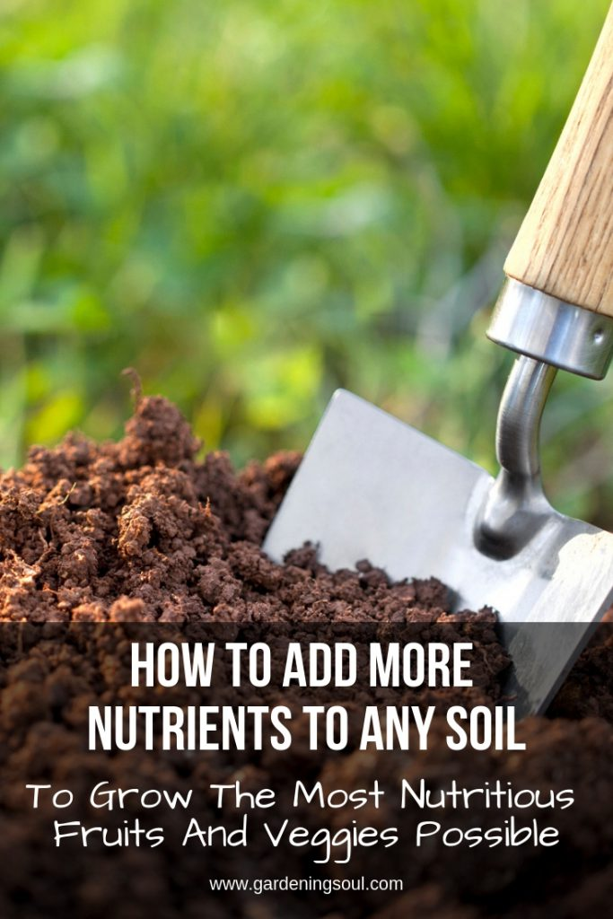 How To Add More Nutrients To Any Soil To Grow The Most Nutritious