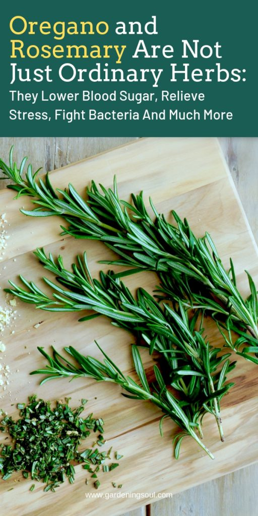 Oregano and Rosemary Are Not Just Ordinary Herbs: They Lower Blood Sugar, Relieve Stress, Fight Bacteria And Much More