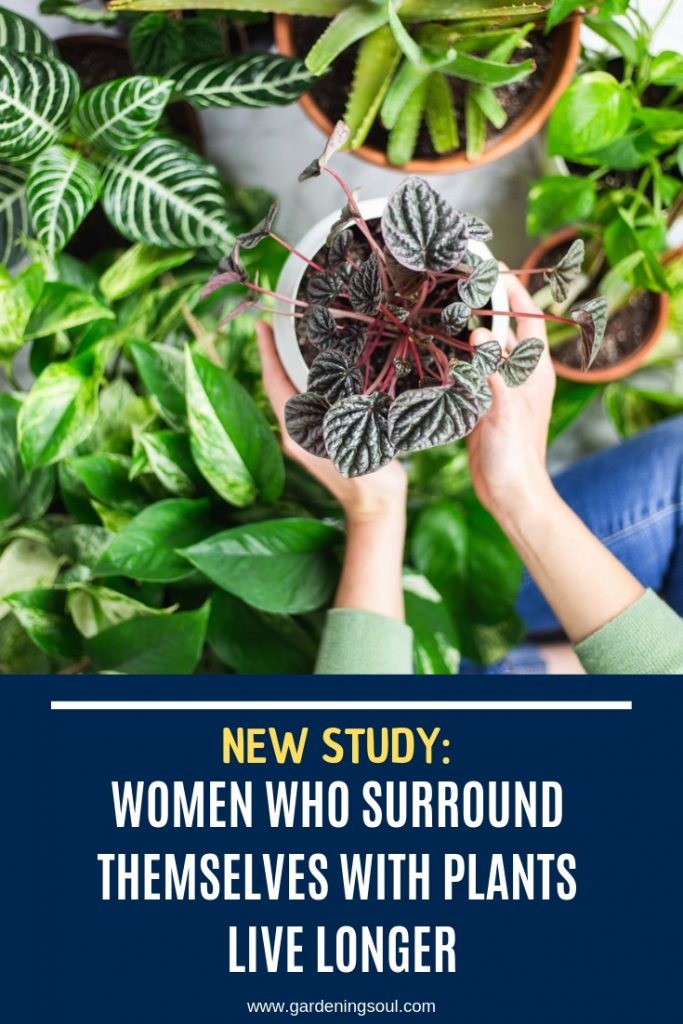 Women Who Surround Themselves With Plants Live Longer